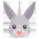 Comederos conejos