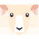 Comederos ovejas