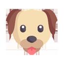Comederos perros