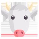 Comederos vacas